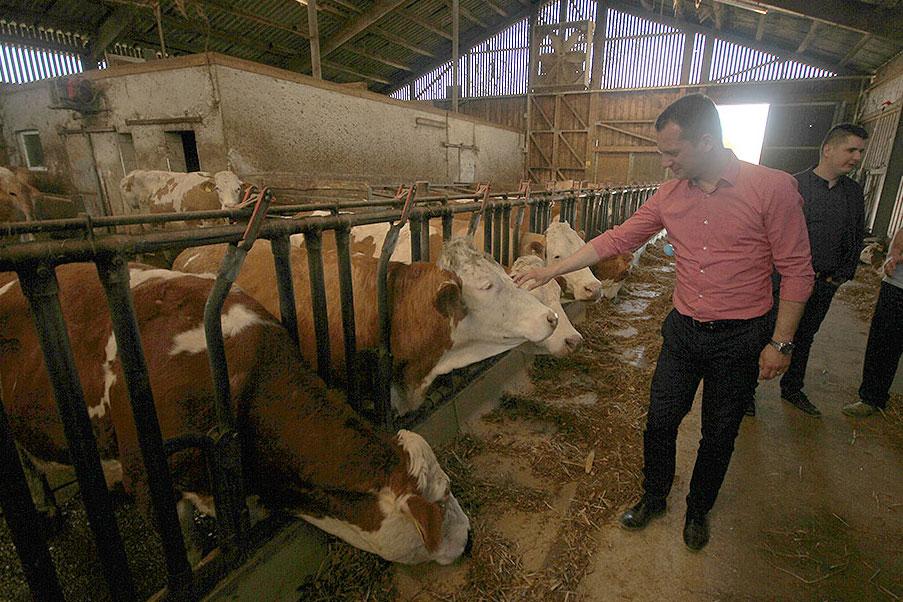 """Virovitički sir i vrhnje na policama: Početkom iduće godine očekuje se početak gradnje """"Centra za istraživanje i razvoj u mljekarstvu"""""""